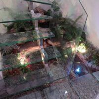escaleras-en-vidrio-10
