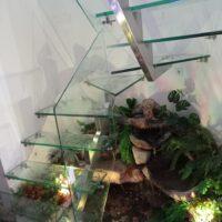 escaleras-en-vidrio-11